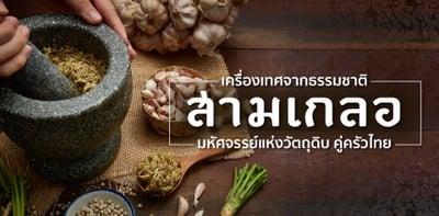 """""""สามเกลอ"""" เครื่องเทศจากธรรมชาติ มหัศจรรย์วัตถุดิบคู่ครัวไทย"""