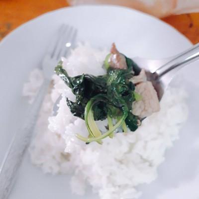 วิธีทำ ผัดผักขมจีนใส่หมู