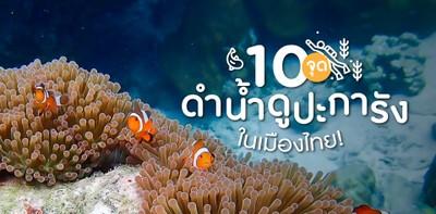 10 จุดดำน้ำ ดูปะการัง ในเมืองไทย!