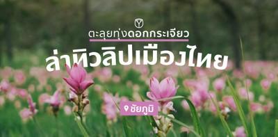 ตะลุยทุ่งดอกกระเจียว ล่าทิวลิปเมืองไทย! ที่เที่ยวชัยภูมิ 2 วัน 1 คืน