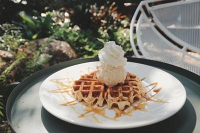 วาฟเฟิลไอศกรีม