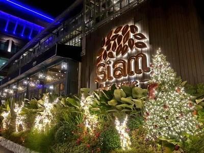 Siam Brasserie (สยามบราสเซอรี)
