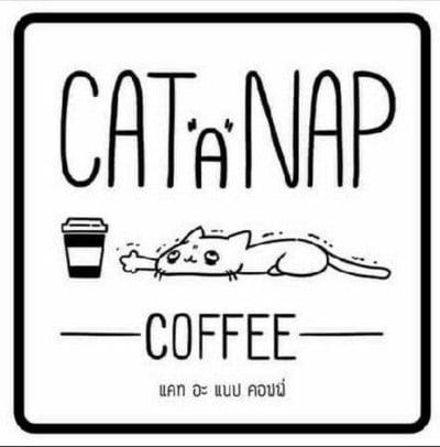 "Cat ""A"" Nap coffee"