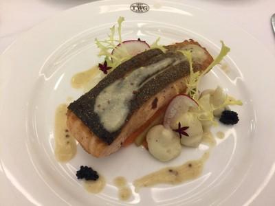 Crusted Seared Salmon
