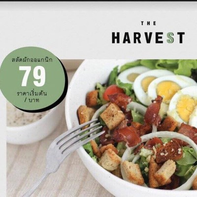 The harvest healthy everyday