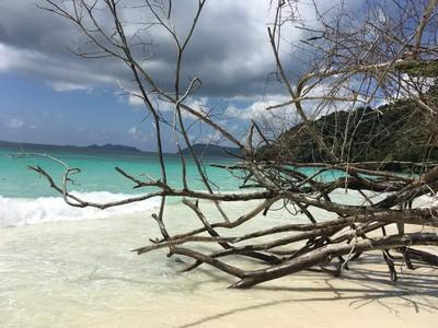 เกาะค้างคาว