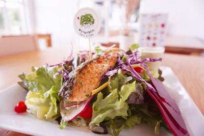 สลัดแซลม่อนจี๊ดจ๊าด Salmon salad