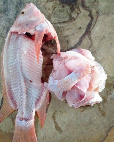 วิธีทำ ปลาทับทิมทอดสมุนไพร