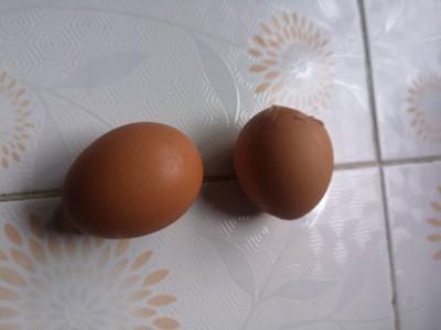 วิธีทำ ไข่ตุ๋นร้อนๆยามเช้า