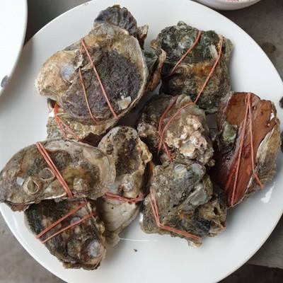 ร้านจ่าแดง ซีฟู๊ด Jadaeng Seafood & Restuarant