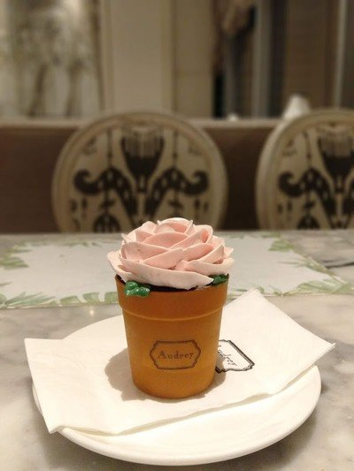 Flower Pot : Pink Rose (125++) ชอบความครีเอทเมนูนี้ แต่รสชาติยังเฉยอยู่ค่ะ