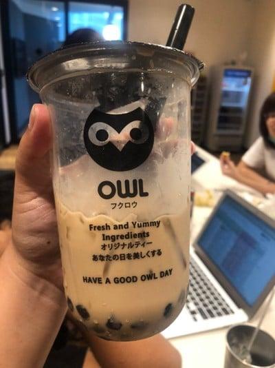 Owl Cha พัฒนาการ 20 พัฒนาการ 20