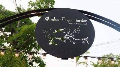 Monkey Tree Garden Monkey Tree Garden