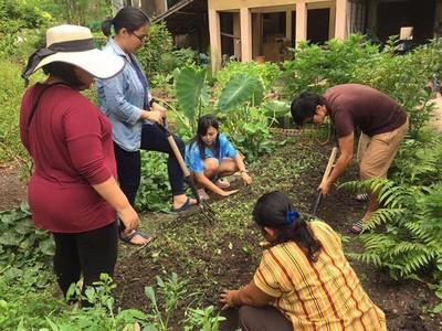 ขอขอบคุณรูปภาพจาก FB ศูนย์เรียนรู้เกษตรในเมือง บ้านเจ้าชายผัก Veggie Prince City