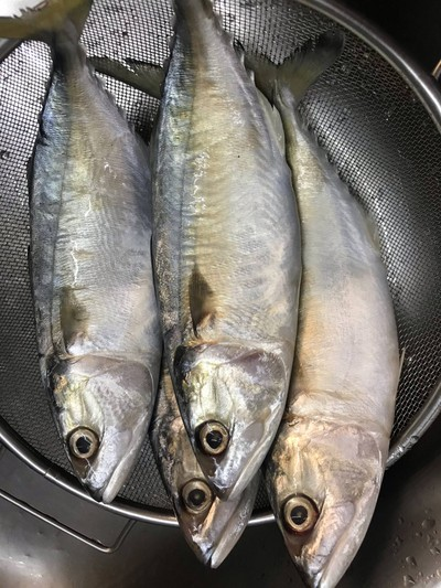 วิธีทำ ปลาทูต้มมะดัน