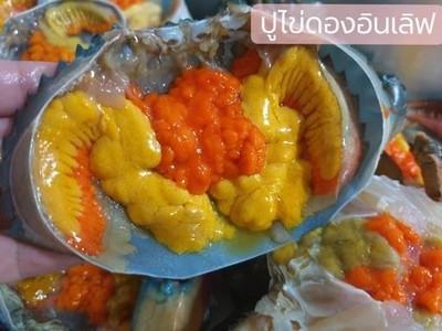 ปูไข่ดองอินเลิฟ อุดมสุข51(ซอยประวิทย์และเพื่อน8/2) (ปูไข่ดอง)