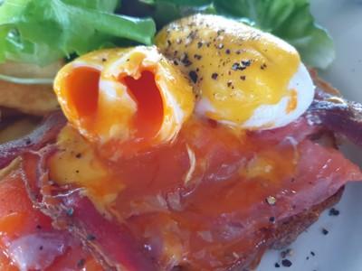 Eggs Benedict Bacon Salmon