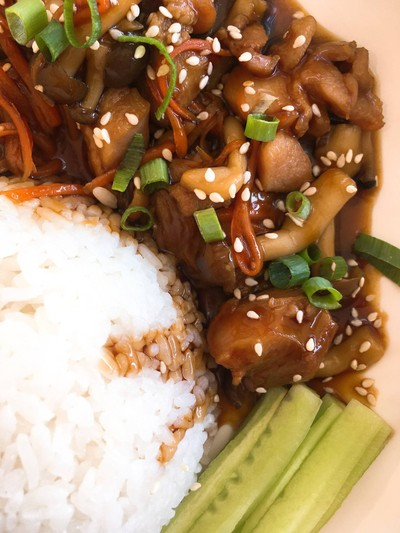 rice topped with teriyaki chicken
