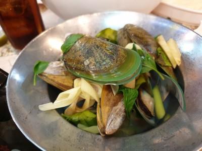 หอยแมลงภู่นิวซีแลนด์