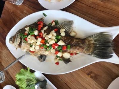 ปลากระพงทอด ราดน้ำปลาพริกสด