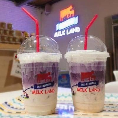 Thai-Denmark Milk Land ม.เกษตร ศรีราชา