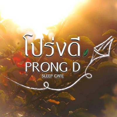 โปร่งดี สลีฟ คาเฟ่ Prong D Sleep Cafe