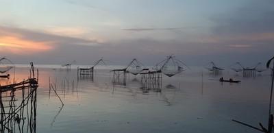 ชมยอยักษ์บนผืนน้ำทะเลน้อยพัทลุง