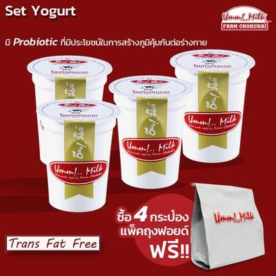 Set Yogurt