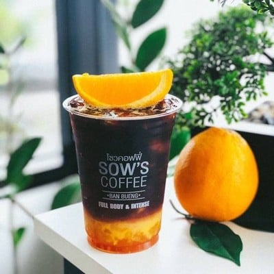 Sow's Coffee สยามธารามันตรา