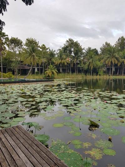 ภัทธารารีสอร์ทแอนด์สปา (Phatthara Resort & Spa)