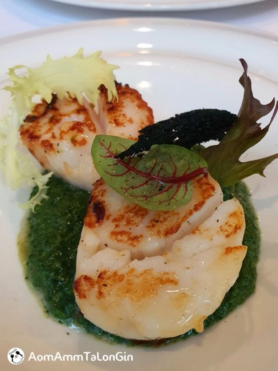 Roast Scallops, Spinach Cream, Balsamic Pearls