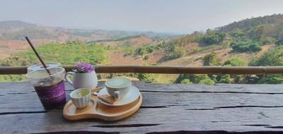 Green Tea Late'