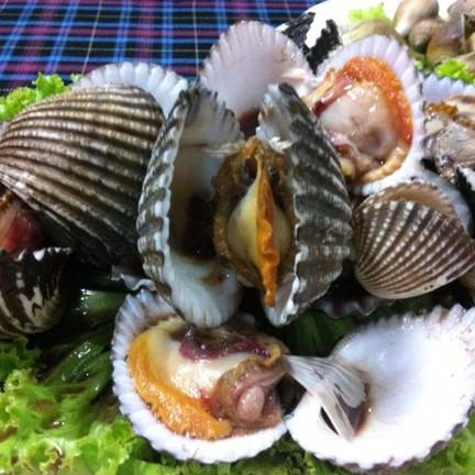 หอยแคลง