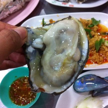 หอยใหญ่มากค่ะ ตัวละ50บาท