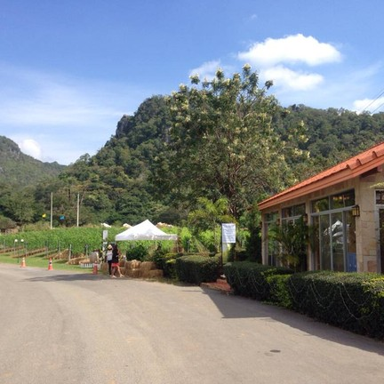GranMonte Vineyard and Winery เขาใหญ่