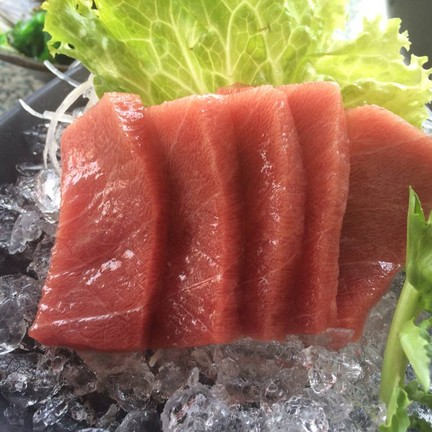 ปลาชูโทโร่