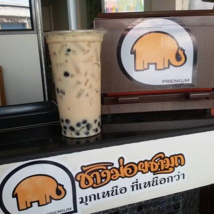 ช้างม่อยชามุก