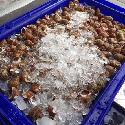 Seafood Aroy Delivery สาขาเดียว
