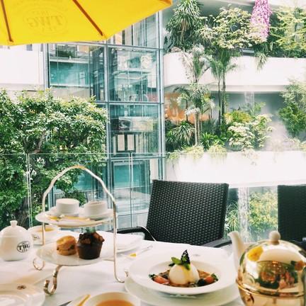 กับ TWG Tea Jelly แล้วก็ วิปครีม  ชา Green Tea – Iron Monk Tea หอมอร่อยมาก