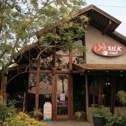 Silk Cup