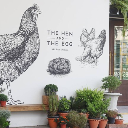 The Hen And The Egg