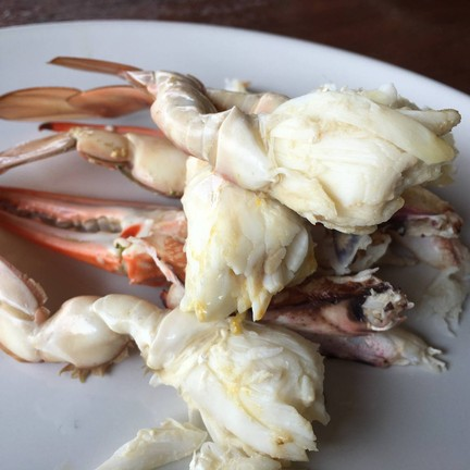 Noochy Seafood