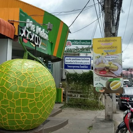 Me melon หาดใหญ่