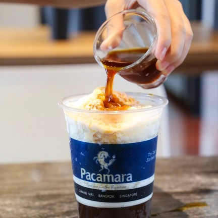Pacamara coffee Roaster X Specialty Coffee lab Thonglor 25