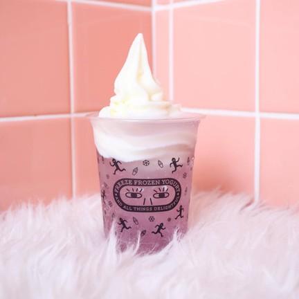 Freeze Frozen Yogurt สยามพารากอน