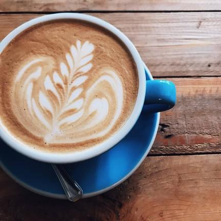 Porcupine CAFE