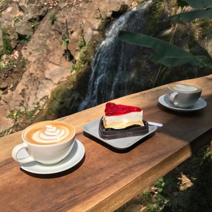 Jungle De Cafe