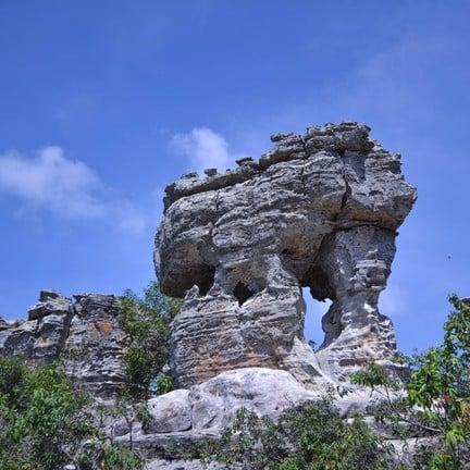 อุทยานแห่งชาติป่าหินงาม (ทุ่งดอกกระเจียว)