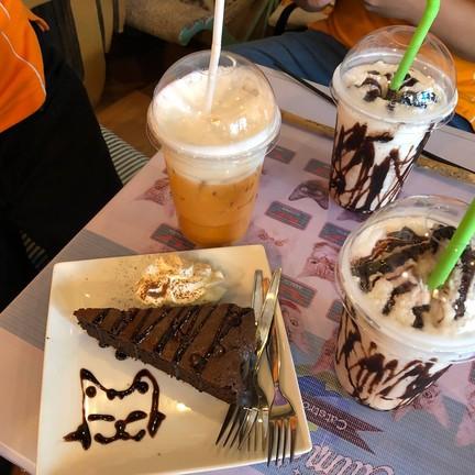 Catmosphere Cat Café  เชียงใหม่