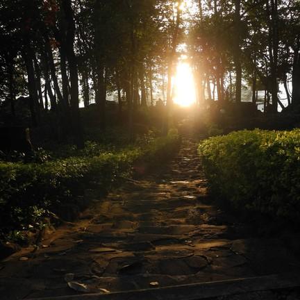 รูปภาพจาก FB อุทยานแห่งชาติภูเก้า-ภูพานคำ